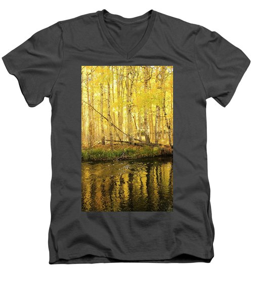 Autumn Soft Light In Stream Men's V-Neck T-Shirt