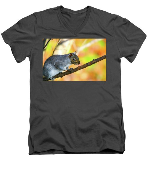 Men's V-Neck T-Shirt featuring the photograph Autumn Squirrel by Karol Livote