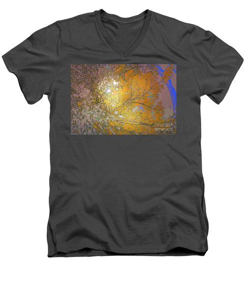 Autumn Sun Men's V-Neck T-Shirt by Deborah Nakano