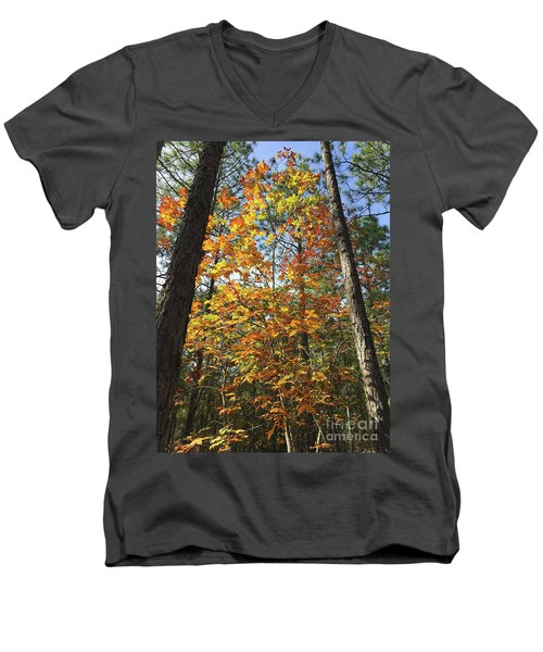 Autumn Sunday Men's V-Neck T-Shirt