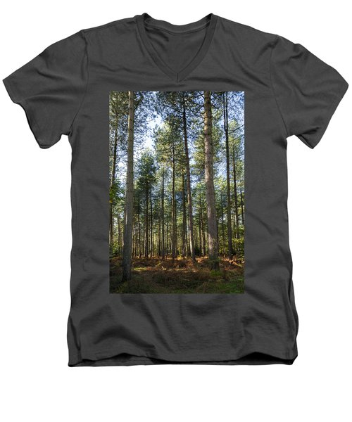 Autumn Tranquil Forest Men's V-Neck T-Shirt