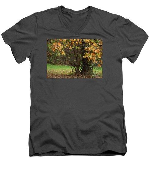 Autumn Tree 2 Men's V-Neck T-Shirt by Rudi Prott