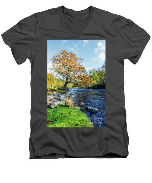 Autumn Tree Men's V-Neck T-Shirt