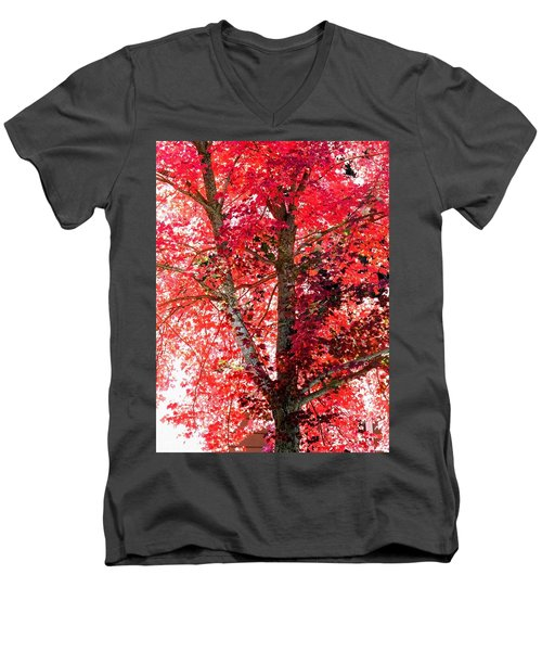Men's V-Neck T-Shirt featuring the photograph Autumn Tree by Michael Dohnalek