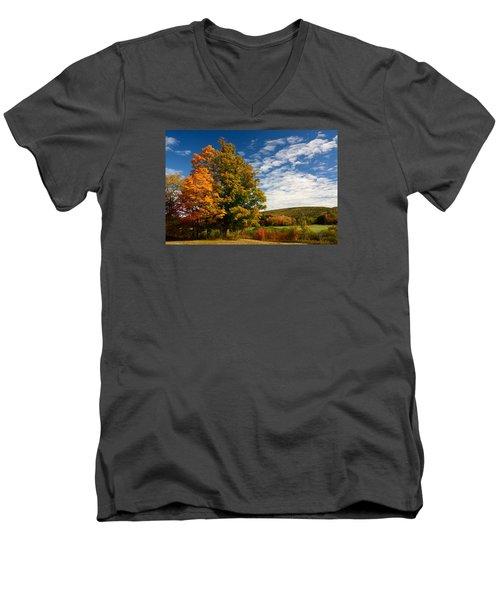Autumn Tree On The Windham Path Men's V-Neck T-Shirt by Nancy De Flon