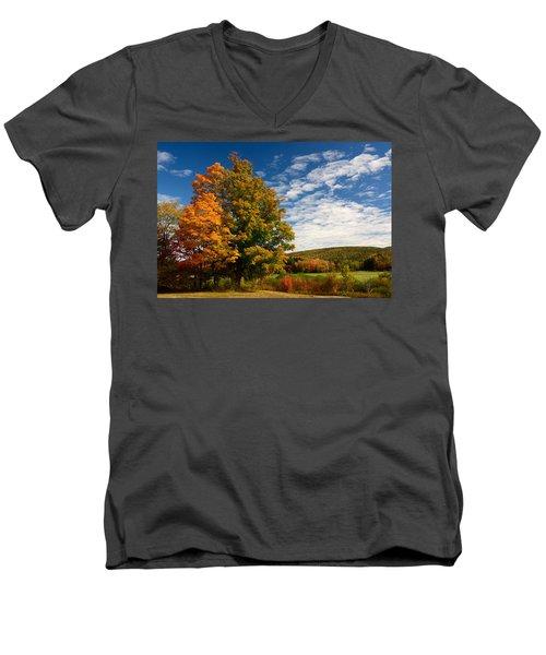 Autumn Tree On The Windham Path Men's V-Neck T-Shirt