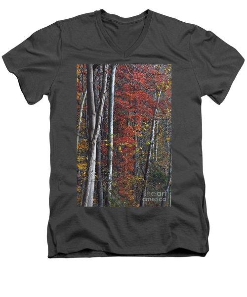 Autumn Trees 8261c Men's V-Neck T-Shirt