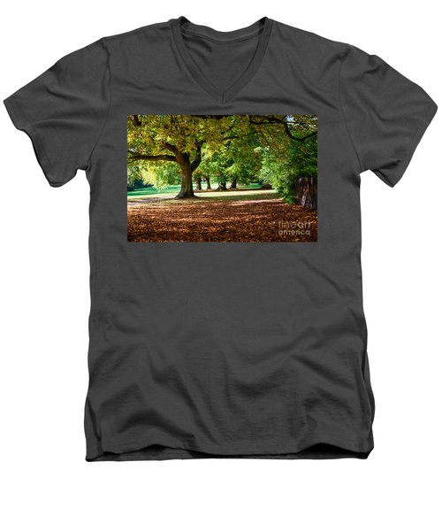 Men's V-Neck T-Shirt featuring the photograph Autumn Walk In The Park by Colin Rayner