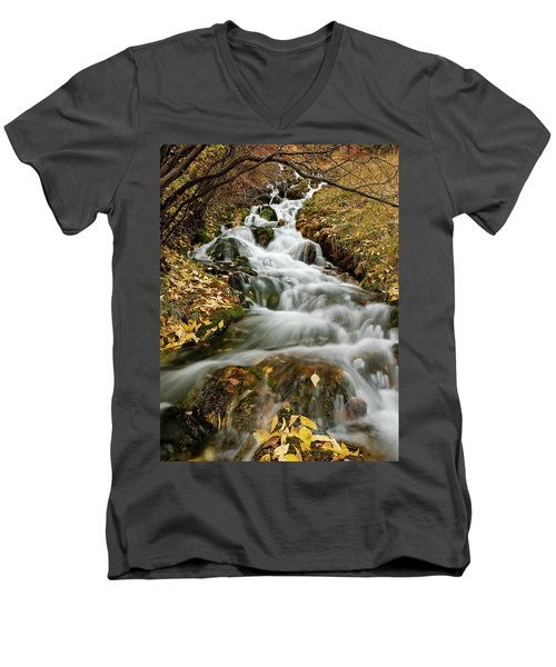 Autumn Waterfall Men's V-Neck T-Shirt