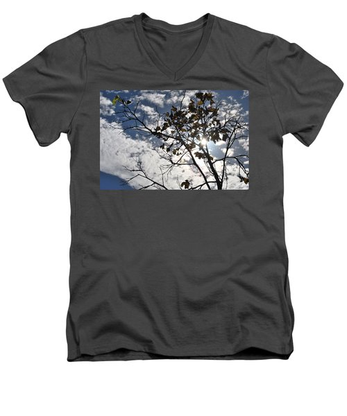 Autumn Yellow Back-lit Tree Branch Men's V-Neck T-Shirt