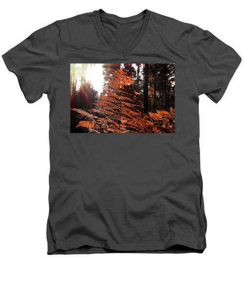 Autumnal Evening Men's V-Neck T-Shirt