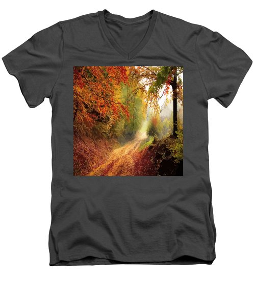 Autumnal Pathway Men's V-Neck T-Shirt