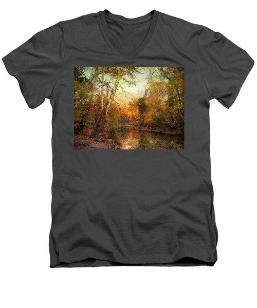 Autumnal Tones Men's V-Neck T-Shirt