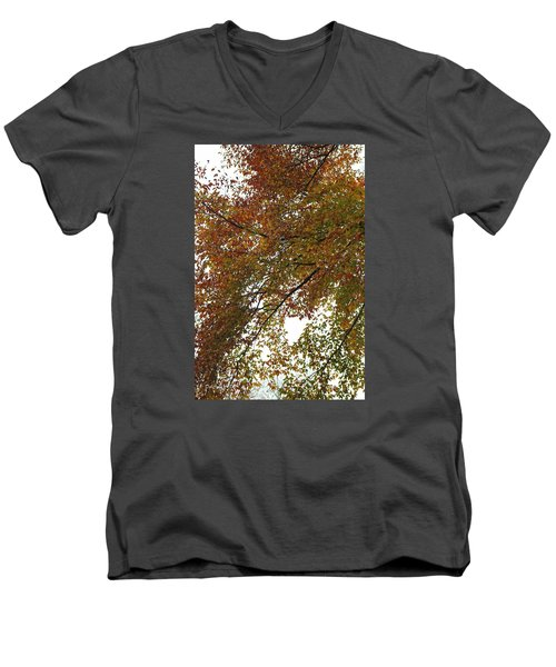 Autumn's Abstract Men's V-Neck T-Shirt