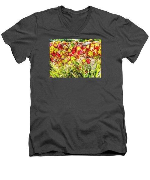 Autumn's Kiss Men's V-Neck T-Shirt