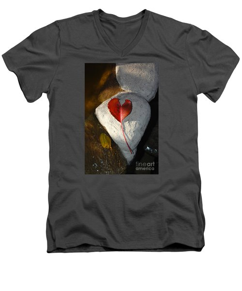Autumn's Love And Serenity Men's V-Neck T-Shirt