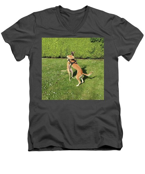 Ava The Saluki And Finly The Lurcher Men's V-Neck T-Shirt