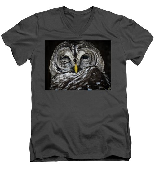 Avery's Owls, No. 11 Men's V-Neck T-Shirt