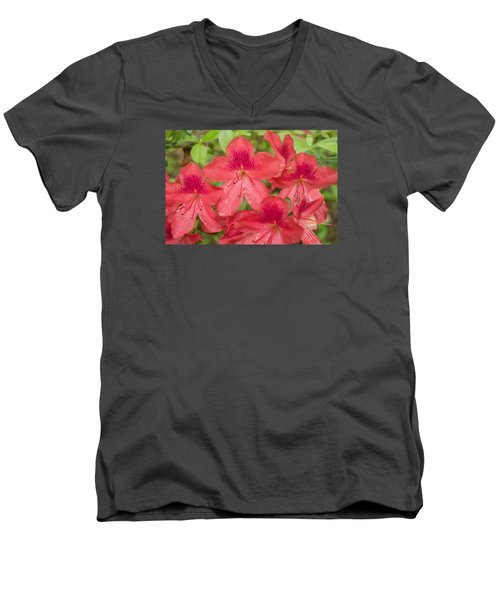 Men's V-Neck T-Shirt featuring the photograph Azalea Blossoms by Linda Geiger