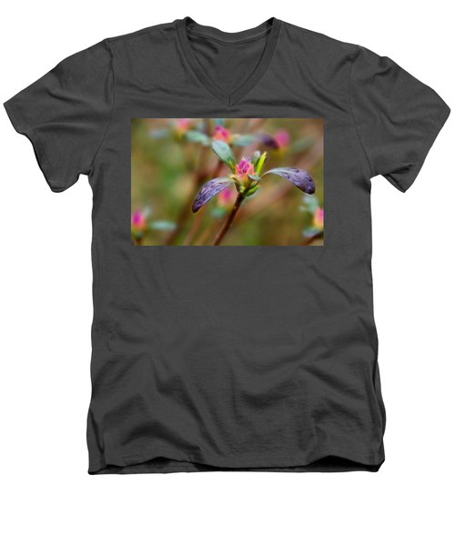 Azalea Bud Energy Men's V-Neck T-Shirt
