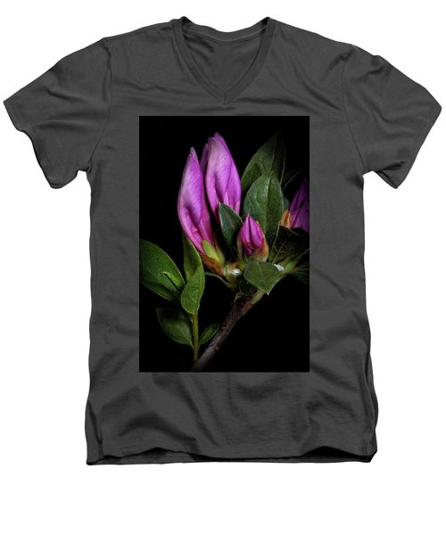 Men's V-Neck T-Shirt featuring the photograph Azalea Buds by Richard Rizzo