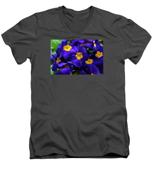 Men's V-Neck T-Shirt featuring the photograph Azure Primrose by Michiale Schneider