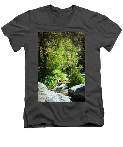 Babbling Brook Men's V-Neck T-Shirt