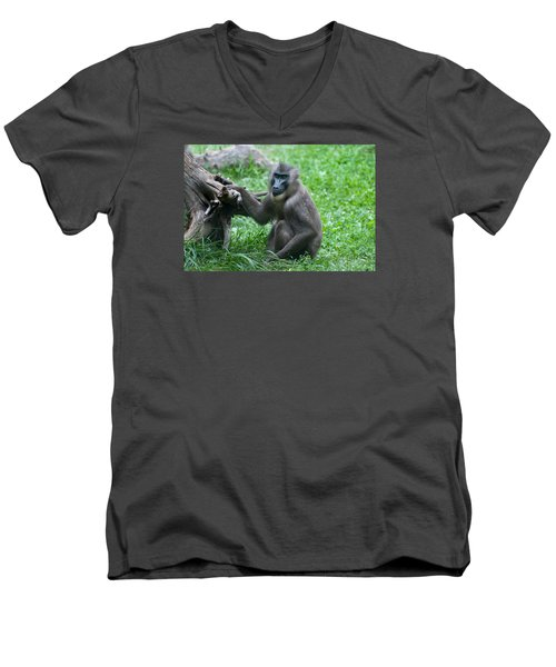 Men's V-Neck T-Shirt featuring the photograph Baboon by Monte Stevens