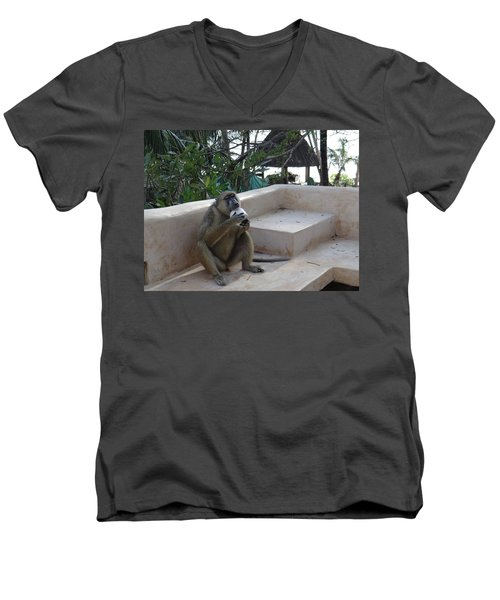 Baboon With A Sweet Tooth Men's V-Neck T-Shirt by Exploramum Exploramum