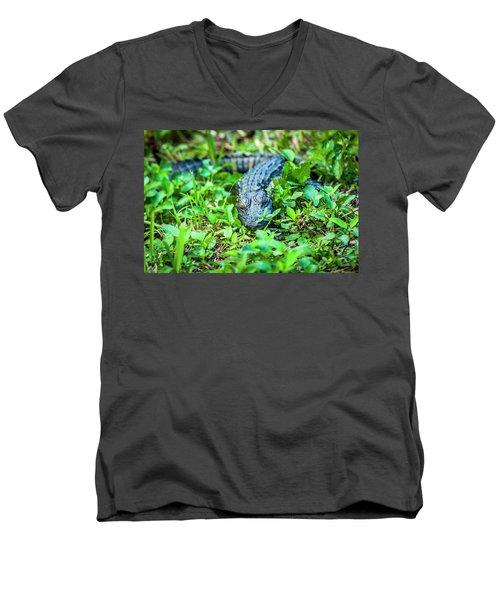 Baby Alligator Men's V-Neck T-Shirt