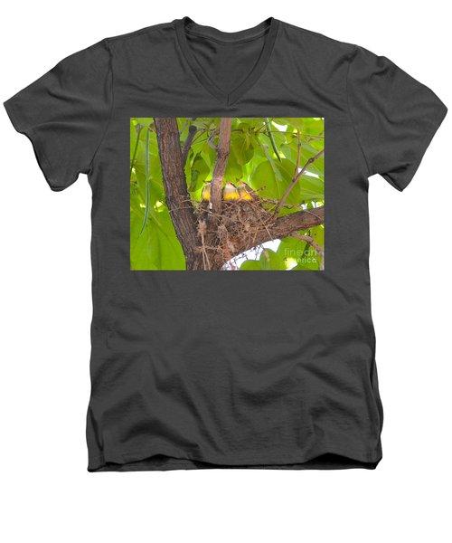 Baby Birds Waiting For Mom Men's V-Neck T-Shirt