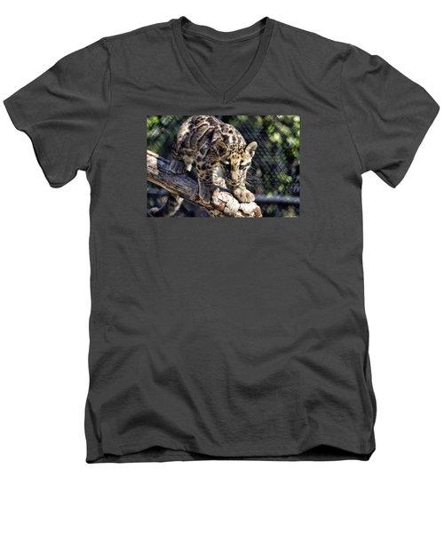 Baby Clouded Leopard Men's V-Neck T-Shirt