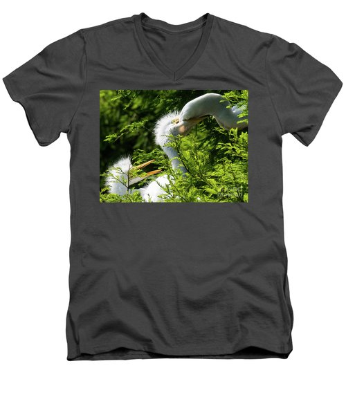 Baby Egrets Being Feed Men's V-Neck T-Shirt