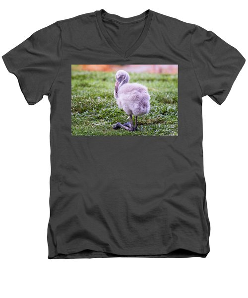 Baby Flamingo Sitting Men's V-Neck T-Shirt