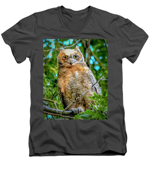Baby Great Horned Owl Men's V-Neck T-Shirt