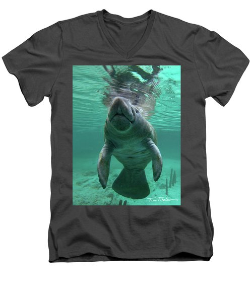 Baby Manatee Men's V-Neck T-Shirt by Tim Fitzharris