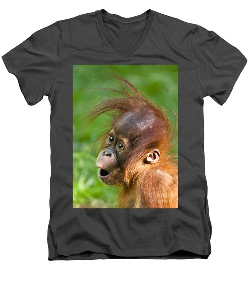 Baby Orangutan Men's V-Neck T-Shirt