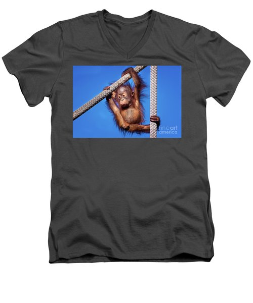 Baby Orangutan Hanging Out Men's V-Neck T-Shirt by Stephanie Hayes