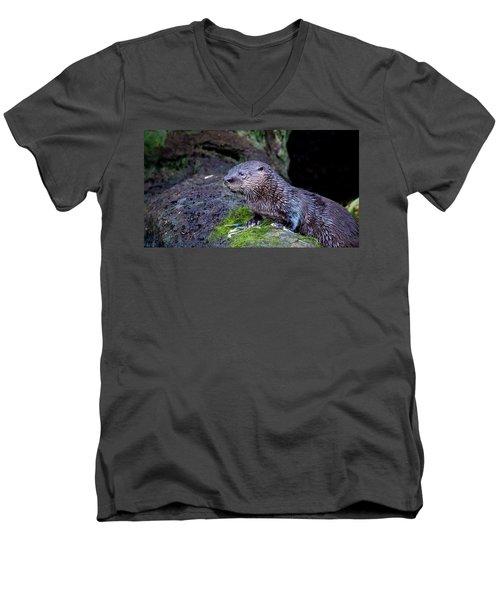 Baby Otter Men's V-Neck T-Shirt