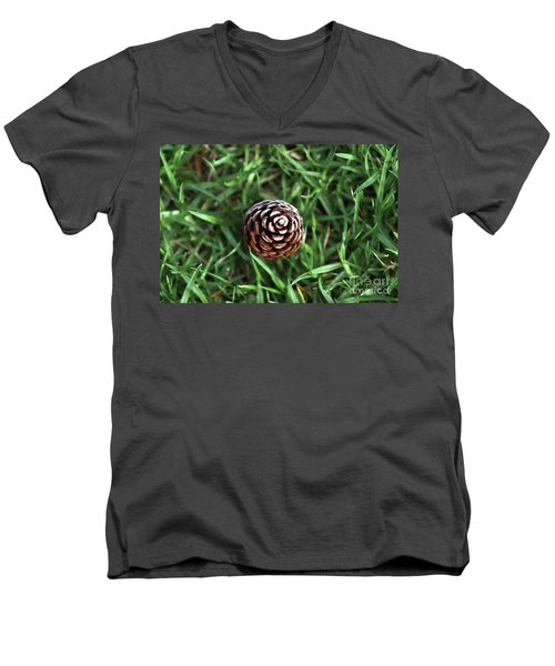 Baby Pine Cone Men's V-Neck T-Shirt