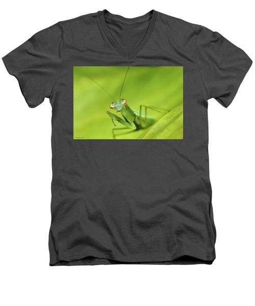 Baby Praymantes 6661 Men's V-Neck T-Shirt