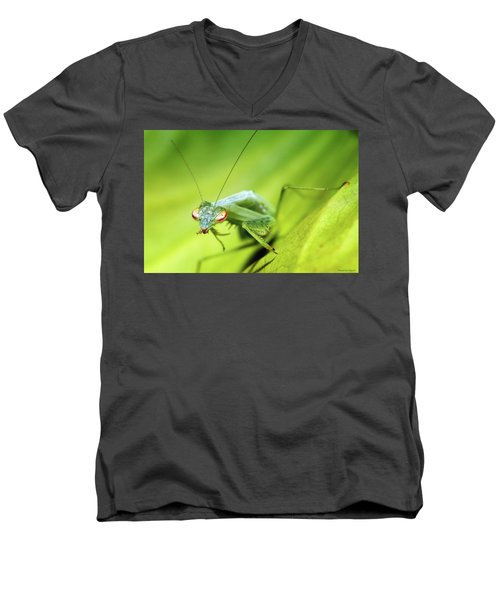Baby Praymantes 6677 Men's V-Neck T-Shirt by Kevin Chippindall