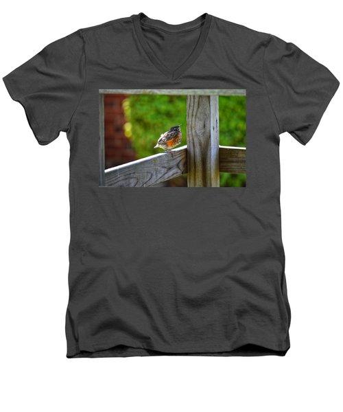 Baby Robin  Men's V-Neck T-Shirt