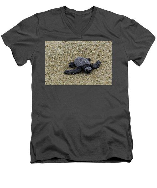 Baby Sea Turtle Men's V-Neck T-Shirt