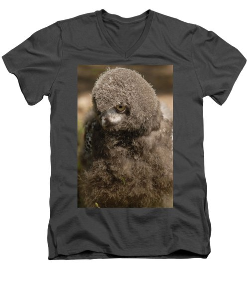 Baby Snowy Owl Men's V-Neck T-Shirt