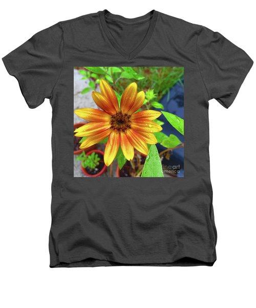 Baby Sunflower Grace Men's V-Neck T-Shirt