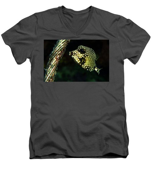 Men's V-Neck T-Shirt featuring the photograph Baby Trunk Fish by Jean Noren