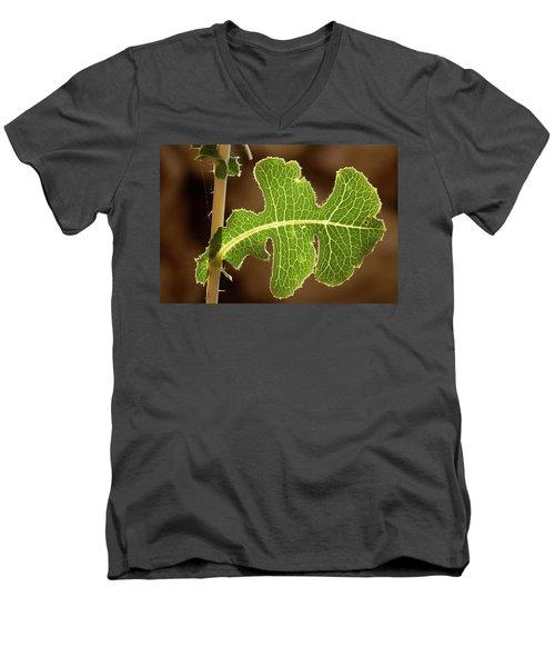 Back Side Light On A Leaf At Sunset Men's V-Neck T-Shirt by Yoel Koskas