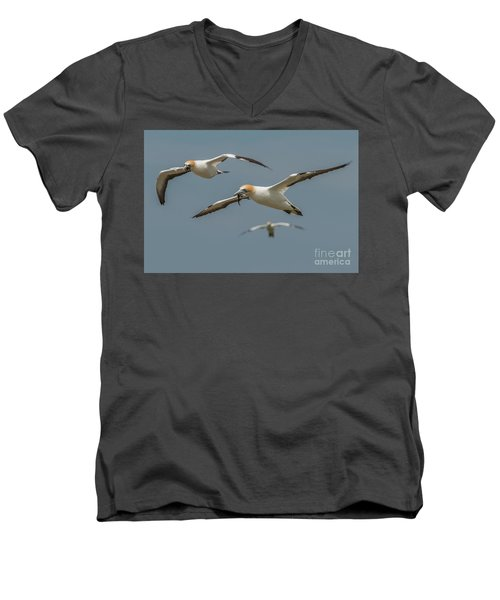 Back To The Colony Men's V-Neck T-Shirt