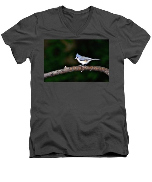 Back Yard Bird Men's V-Neck T-Shirt